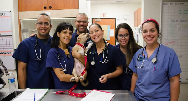 Banfield Pet Hospital® and the Banfield Foundation® helping Associates on the island as well as pets after Hurricane Maria's devastating impact on Puerto Rico Web Version