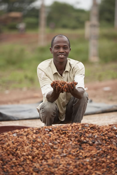 Cocoa Farmer with Beans  (Cote d'Ivoire) Web Version