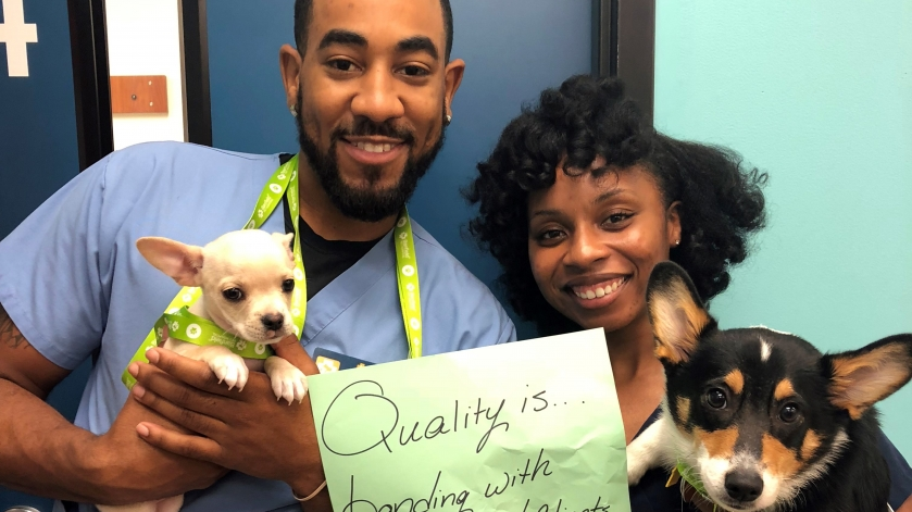 Banfield Associates participate in Quality Week 2018.